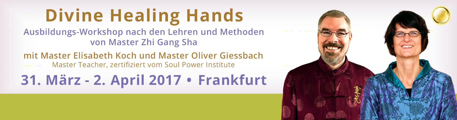 Divine Healing Hands Soul Healer Ausbildung