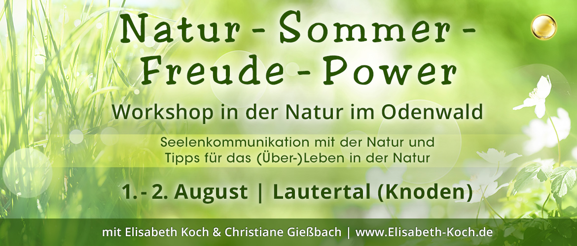 200801 | Natur-Sommer-Freude-Power Workshop in der Natur im Odenwald